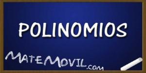 Polinomios-Ejercicios-Resueltos-Web