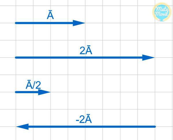 multiplicación-de-un-vector-por-un-escalar