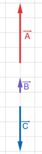 suma-de-vectores-colineales-ejercicios-91
