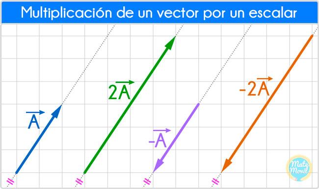 Multiplicación-de-vector-por-escalar2