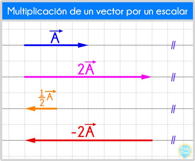 multiplicación de un vector por un escalar